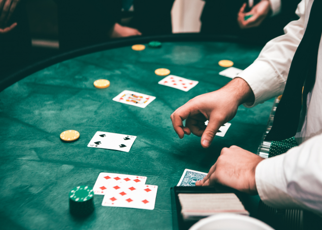Loopy Casino: Courses By The Experts
